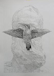 Pencil on paper. 30x42cm